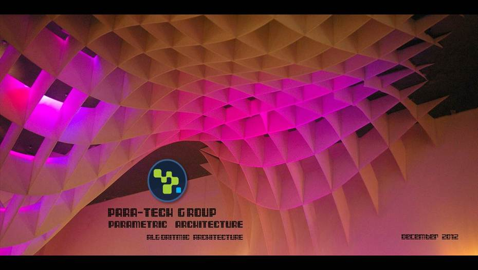 para-tech group
