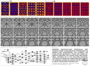 "MultiFunctional ""Energy+Architecture"""