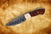 150112 D Ashby Damsc Hunter w Ivry-Irnwd FS JPEG