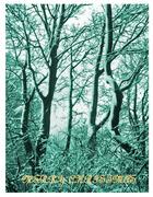 Tree Walks in Snow