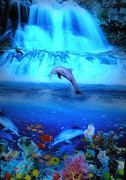 dolphin-tropical-waterfall-moving-picture