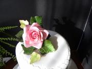 Gum Paste Flower Contest