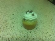 Cannoli cream mini