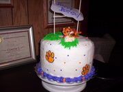 clemson cake 002