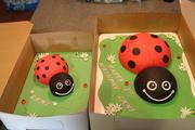 Ladybug cake with mini ladybug