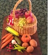Fall's Bountiful Harvest - 916F