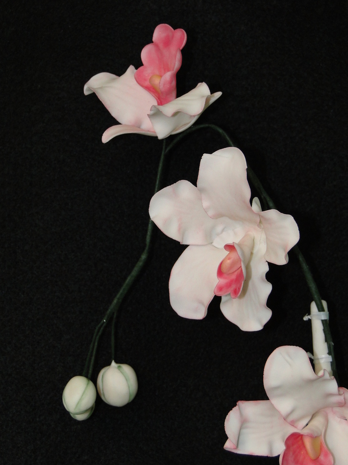 Gum Paste Orchids with Buds