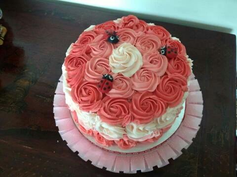 Jeannie's ladybird cake