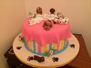 Jo cakes
