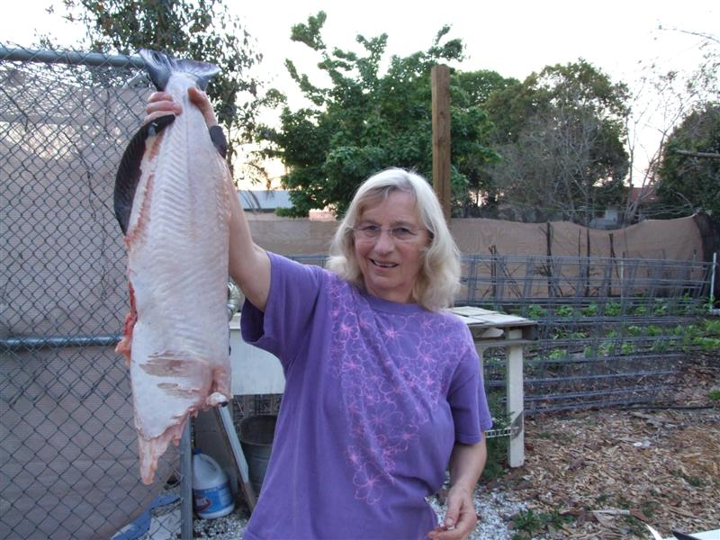 mom about to fillet (Medium)
