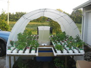 front side of the hoop house