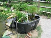 Bio Filter for 2500 gallon Water garden