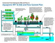 Aquaponic NFT & Ebb#466DF81