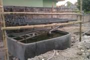 JWL aquaponic early week