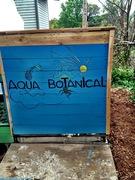 aqua botanical