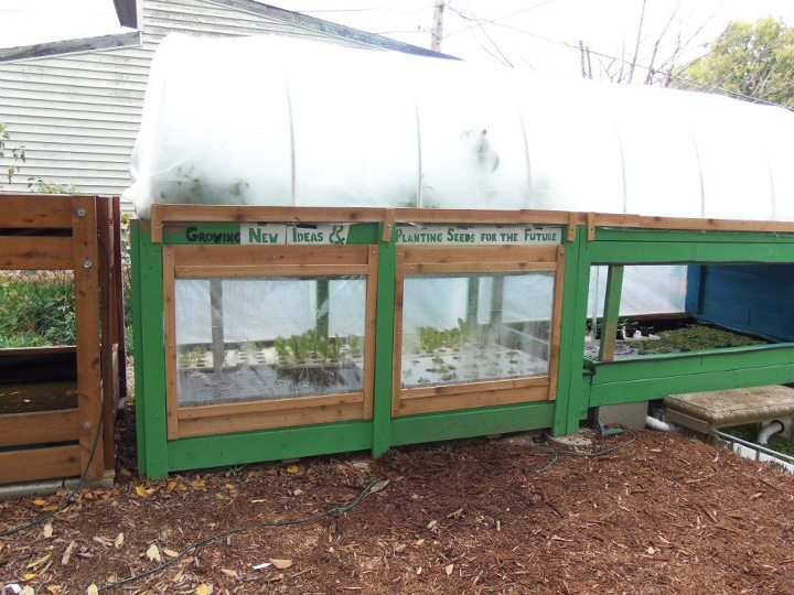 covered aquaponics growbeds