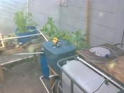 IMG_20121212_161251