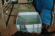 greenhouse sump
