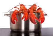 How To Prepare and Cook Lobster?