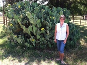 My lovely wife Tami next to a TX size cactus