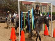 Cowtown Confidence Clinic