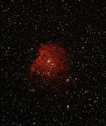 Monkeyhead  Nebula