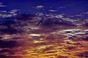 guardando il cielo 2