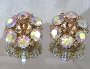 Warner Vintage Earrings