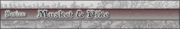 _banner_musket_pike_series