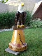 Bald Eagle on Liberty Bell