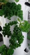 Tower Garden Indoor Growing System Mar 2018