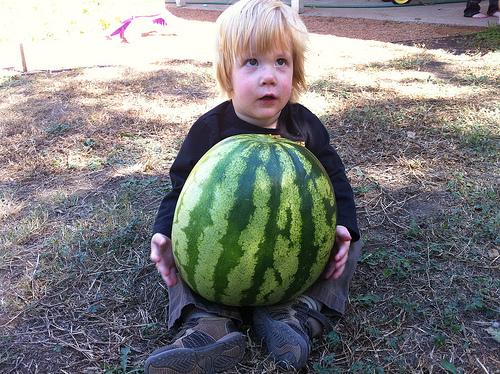 November Watermelons!!
