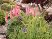 Spring 2012 092