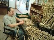 garlic popping 2012 2