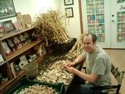 garlic popping 2012