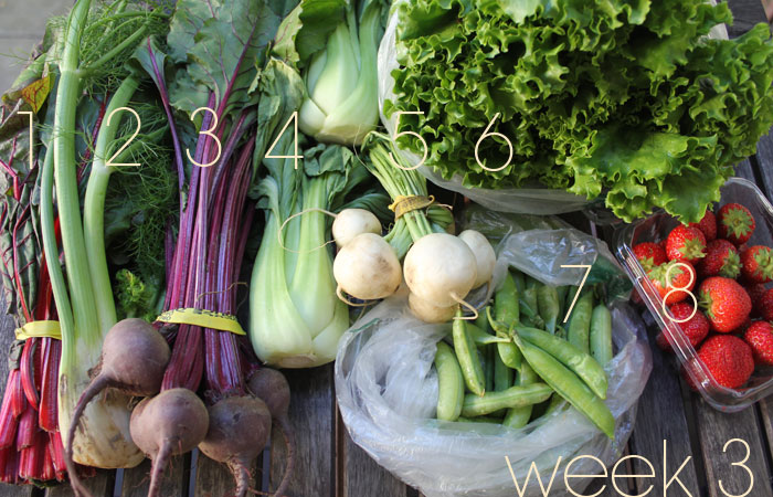 CSA Cookoff Week 3: Quick, Cold Chard Curry & More