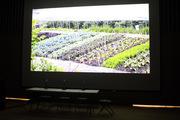 Growing Cities: Advance Screening