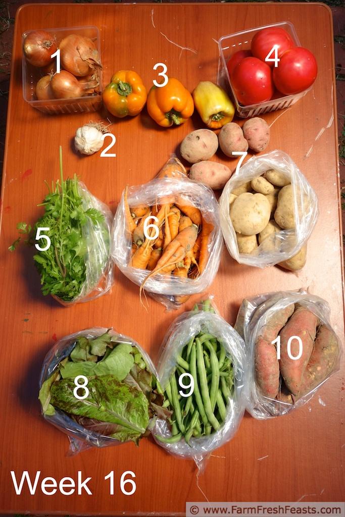 CSA Cookoff Week 16: Kirsten's Slow Cooker Sweet Potato & Chicken Curry