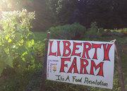 New Entry Open Farms Tour: Liberty Farm