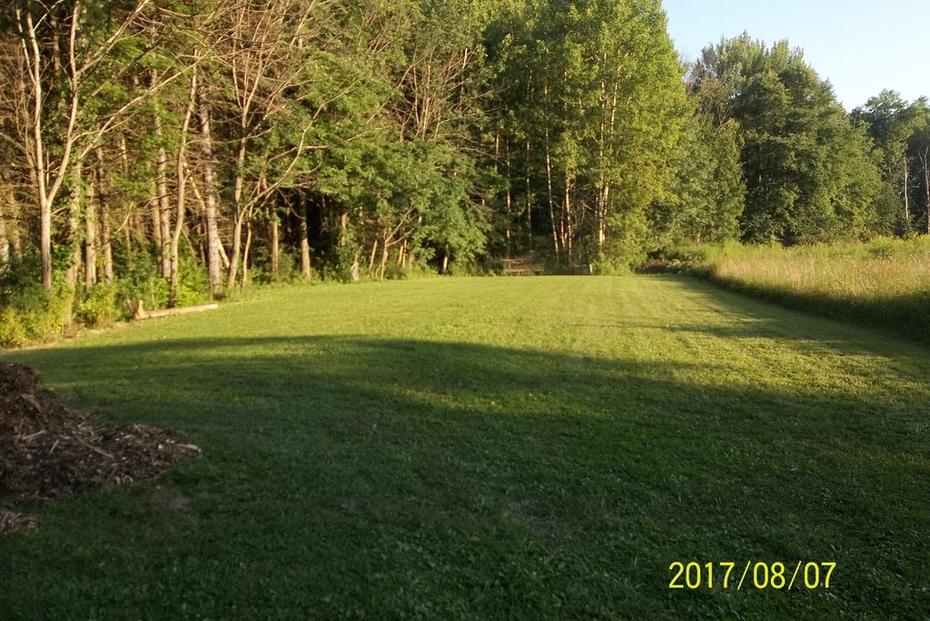 Upper backyard
