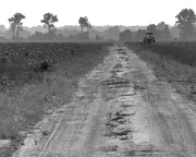 Floodway, Willow Row with Tractor