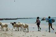 ROOTS of HEALING project: Dakar, Senegal 05