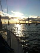 Hamar regatta