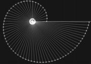 Generation of radial segments