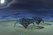 VoronoiRender02