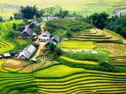 NguyenLyDuongCong_ruong_bac_thang8