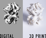 Bone Structure Digital/3D Print