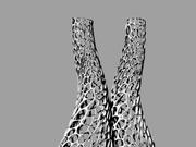 VoronoiExoskeleton
