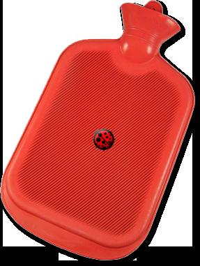 Ladybug Solar Water Heating components