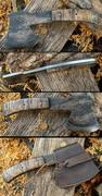 campaxetigermaplemlknives